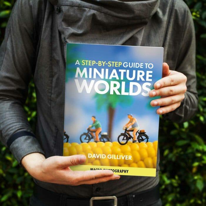 Miniature Worlds eBook